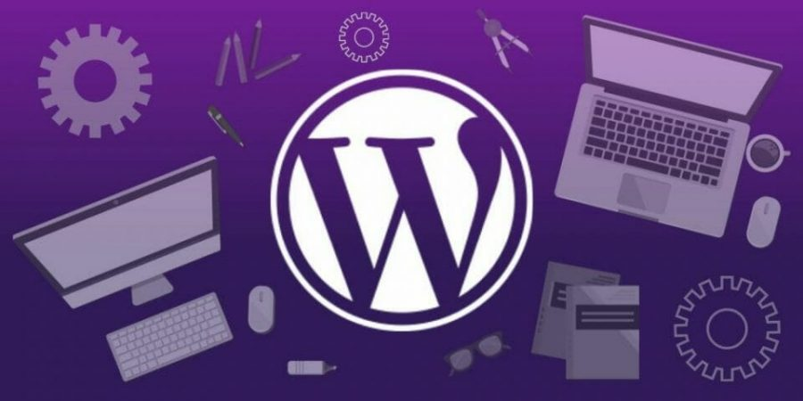 WordPress and Content Management Systems (CMS)
